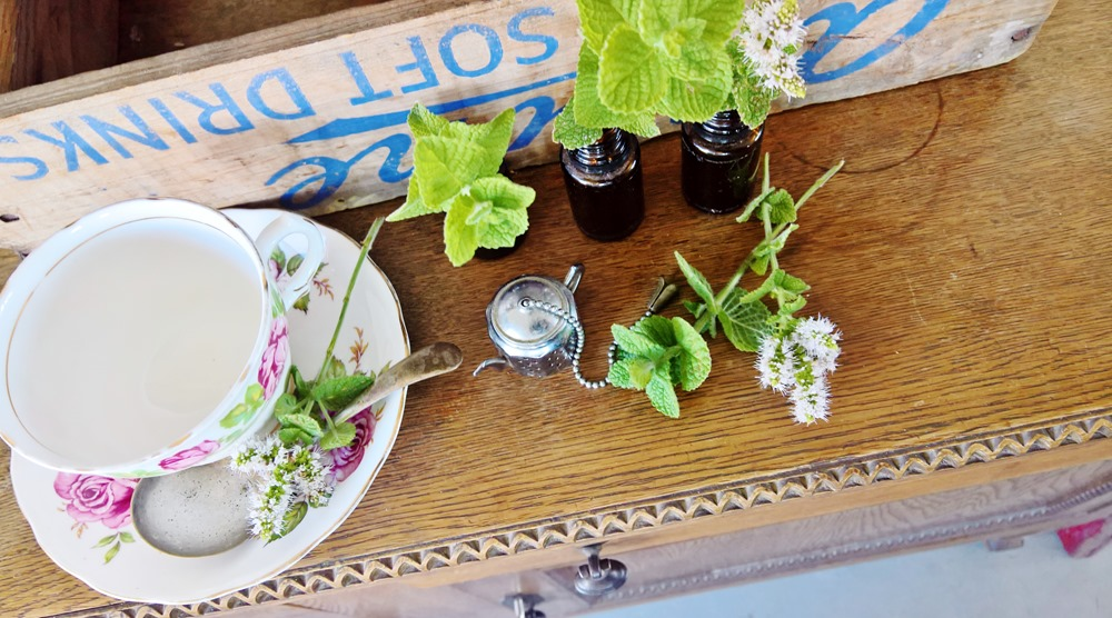 3 ways I use peppermint essential oil in my nest